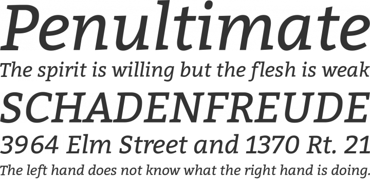Bitter font family befonts download free fonts.